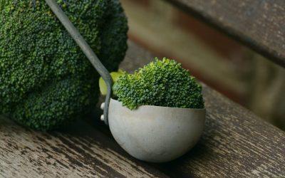 Brokolicový olej ako prevencia vzniku rakoviny!