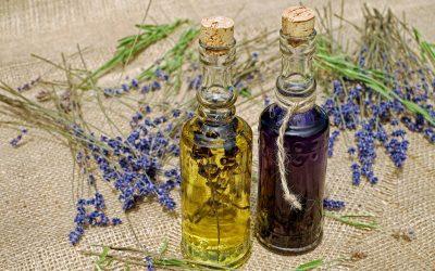 Opunciový olej: aké výhody prináša?