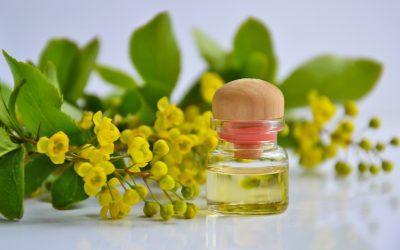 Tamanu olej: aké má účinky na pokožku tela?